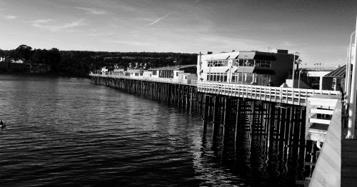 Santa Cruz's Many Wharves: From Lime and Lumber to Ecotourism | Mobile Ranger
