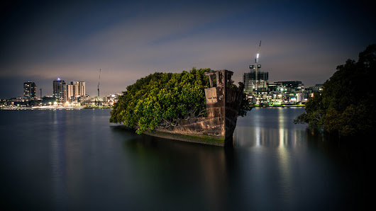 A 102-Year-Old Transport Ship Sprouts a Floating Forest | Colossal