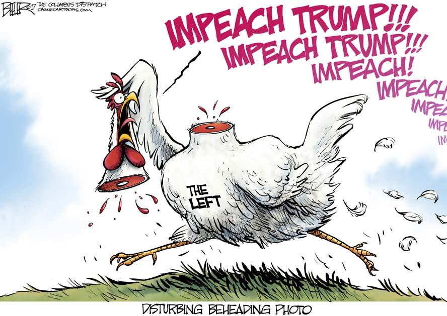 Image result for : Americans don't want Congress to impeach, but Democrats aren't listening