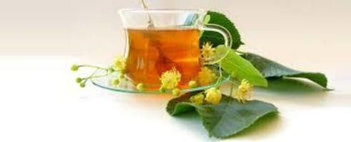 Naturopathy Centers in India: | Naturopath Perth