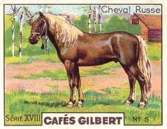 gilbert chevaux007