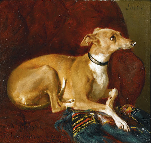 Kissing an Italian Greyhound: A 19th Century Attorney Cites the Law
