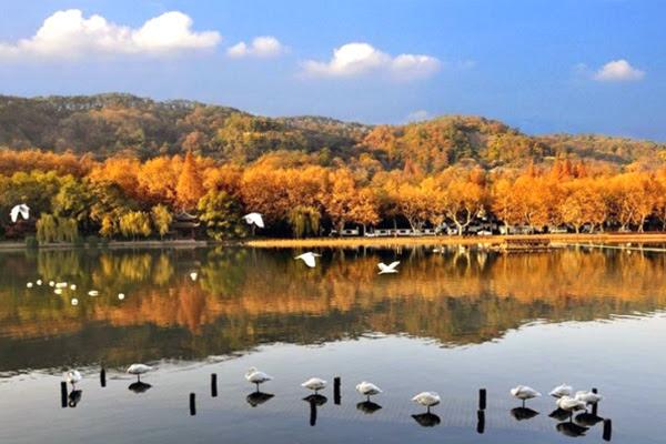 힐링 최적지, 천국 속 천국이라 불리는 '항저우 시시(西溪)'