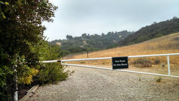 Another view of the trail Nancy and I used for our hike on June 6, 2014.
