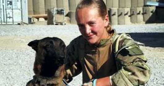 Hero Army dogs who served in Afghanistan to be put down for heartbreaking reason