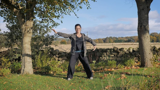 WUDANG SINGLE SNAKE MOVE QIGONG - taiji-forum.com