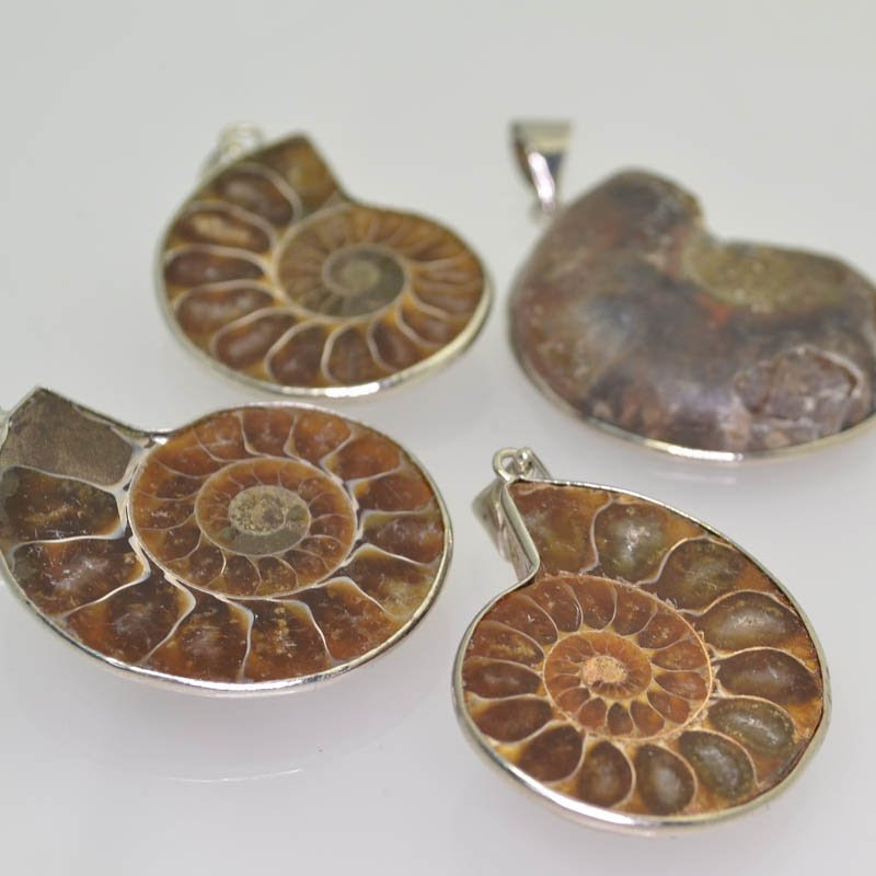 s41542 Stone Pendant -  Fossil Pendant with Bail - Ammonite (1)
