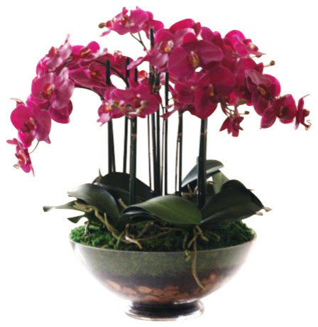 Phalaenopsis Orchid In Glass Flower Arrangement