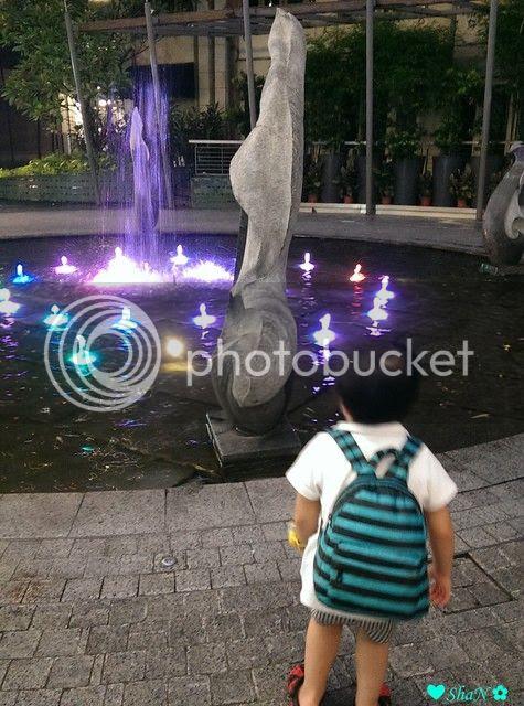 photo 8_zpsngparphp.jpg