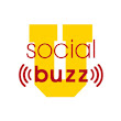 Social Buzz U - Expert social media education without the expert price