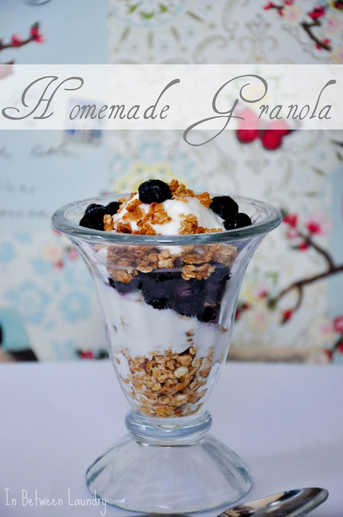 blueberry yogurt granola