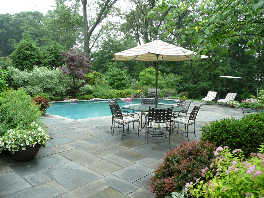 Ideas for backyard pool and landscaping