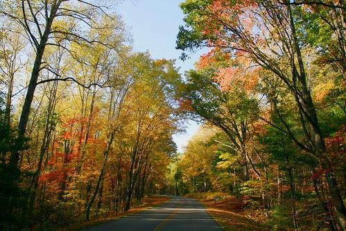 Autumn on the Blue Ridge Parkway in Virginia