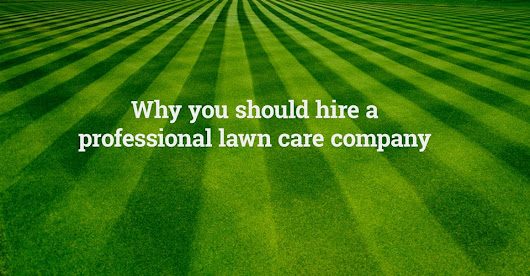 Why You Need Our Professional Lawn Maintenance Services - Land Graphics Inc