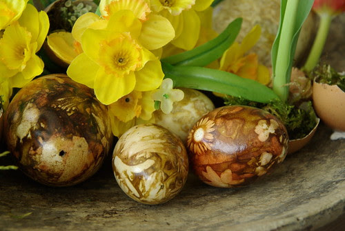 Easter Eggs by karstensfotos