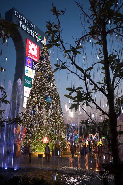 DEC 13: Christmas has come to Chiang Mai! photo _1050728_zps9aec3445.jpg