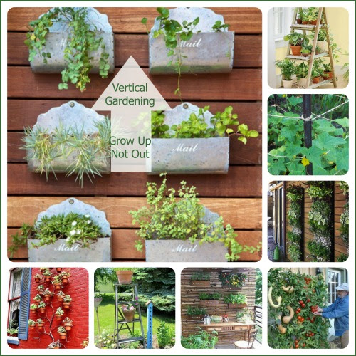 Vertical Gardens - Great Choice for Small Yards - The Gardening Cook