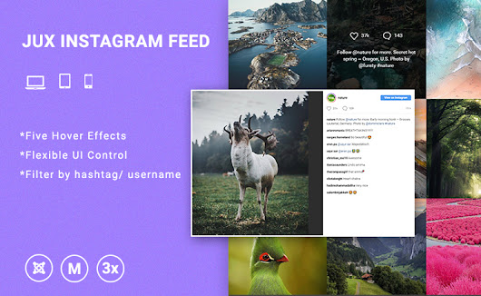 Instagram Feed | Premium Joomla Templates and Extensions