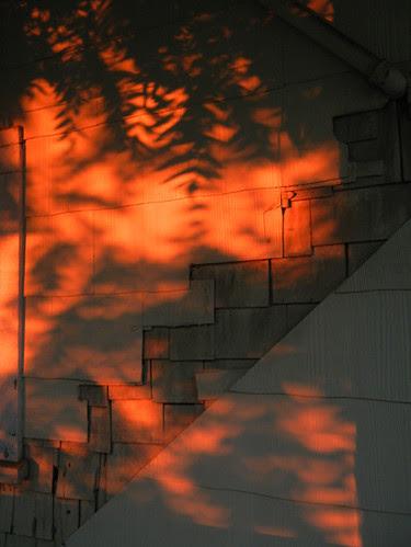 Sunset _ 4215