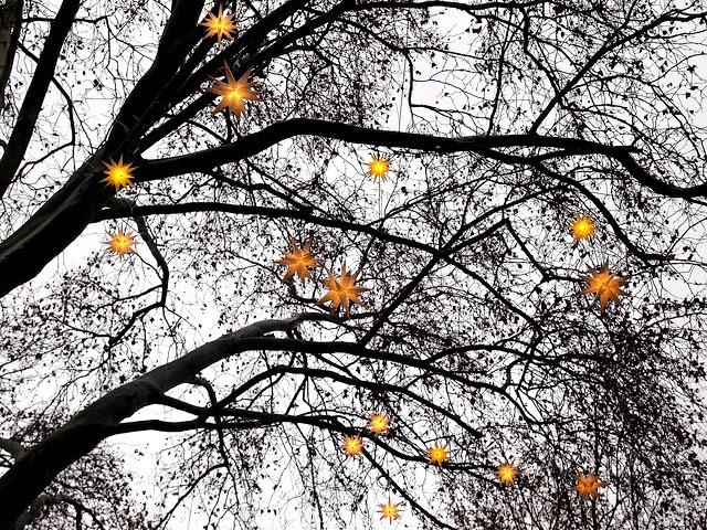 Buon Natale 2013