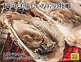 北海道 厚岸 産 殻付 牡蠣 LLサイズ (1個 120g以上) × 15個 ( 牡蠣 ナイフ付き)