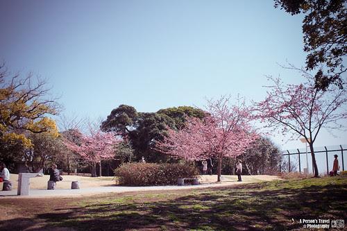 2013_Tokyo_Japan_Chap14_2