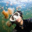 Diver Takes Selfie Among Millions of Jellyfish (PHOTOS) - weather.com