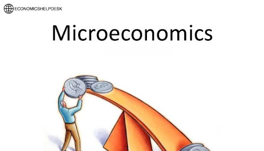 Affordable Microeconomics Assignment Help Service by Economicshelpdesk.com