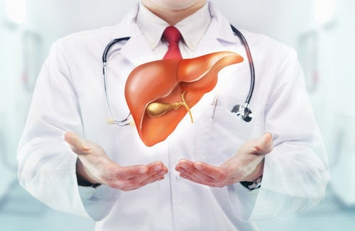 Para el equilibrio del hígado y la vesícula biliar