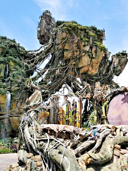 Step Inside Pandora – The World of Avatar at Disney's Animal Kingdom - About A Mom