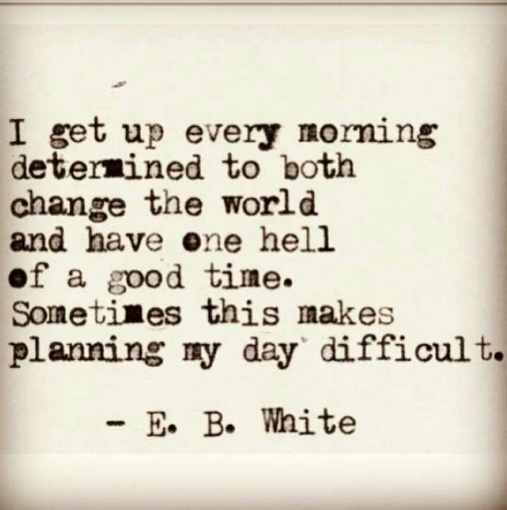 Image result for E.B. White Quotes