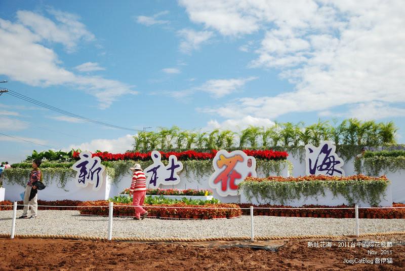 2011_1113_新社花海DSC_3510