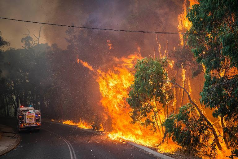 A wildfire burns along the edge of the road next to a firetruck in the Stoneville area, a suburb east of Perth in the state of Western Australia, in this January 12, 2014 Department of Fire and Emergency Services photo
