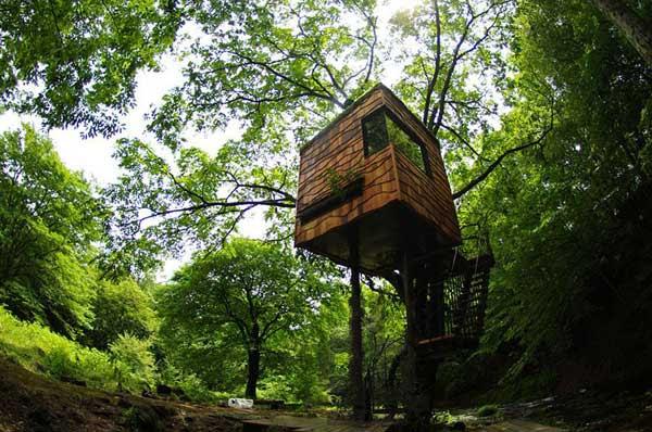amazing-treehouses-6