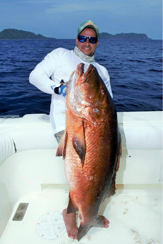 Awesome Fishing Reports from Sport Fish Panama Island Lodge!