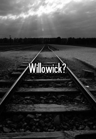Planet Fitness Willowick : planet, fitness, willowick, Planet, Fitness, Willowick, FitnessRetro