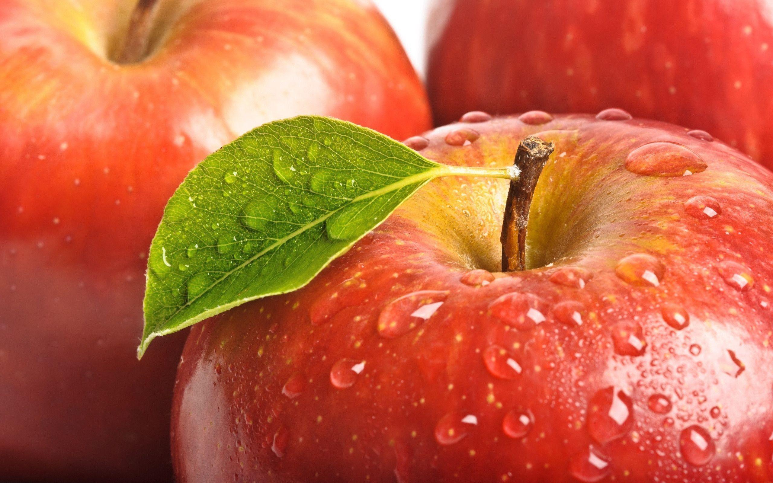Download 2000+ Wallpaper Apple Hd  Terbaik