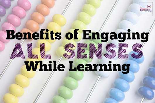 Benefits of Engaging All Senses While Learning