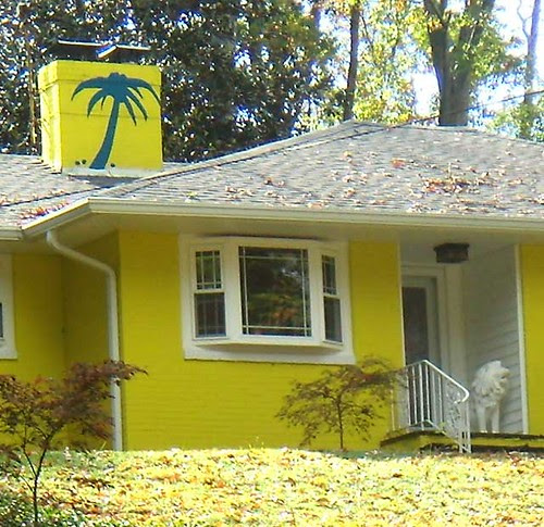 PB071166-Decatur-Yellow-Palm-House-PalmLion-Detail