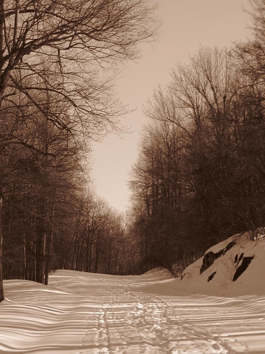 Snowy Parkway