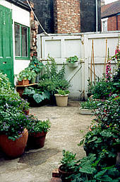 46 Terraced House Backyard Ideas Gif Homelooker