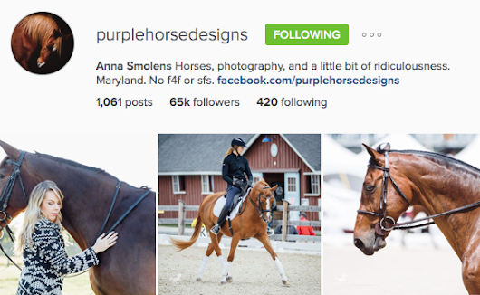 17 : Anna Smolens - Start-up strategies for equine photography that are working - Equine Photographers Podcast