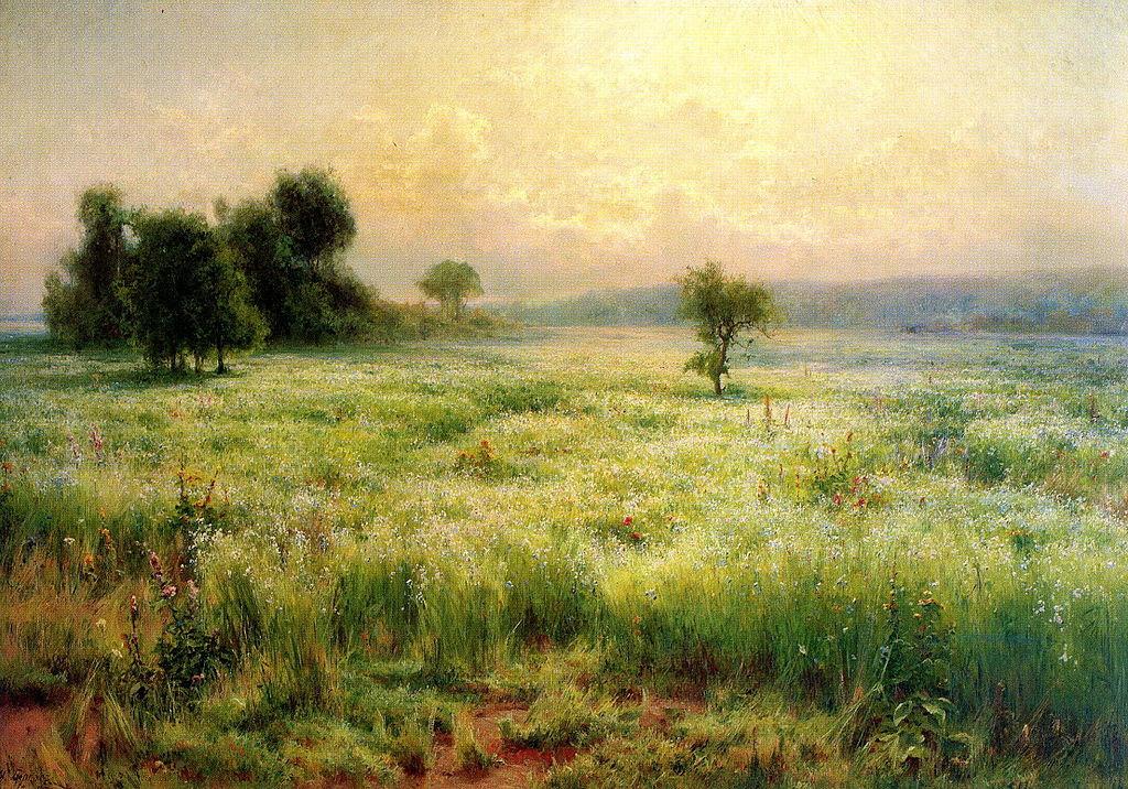 Flax blooms.jpg