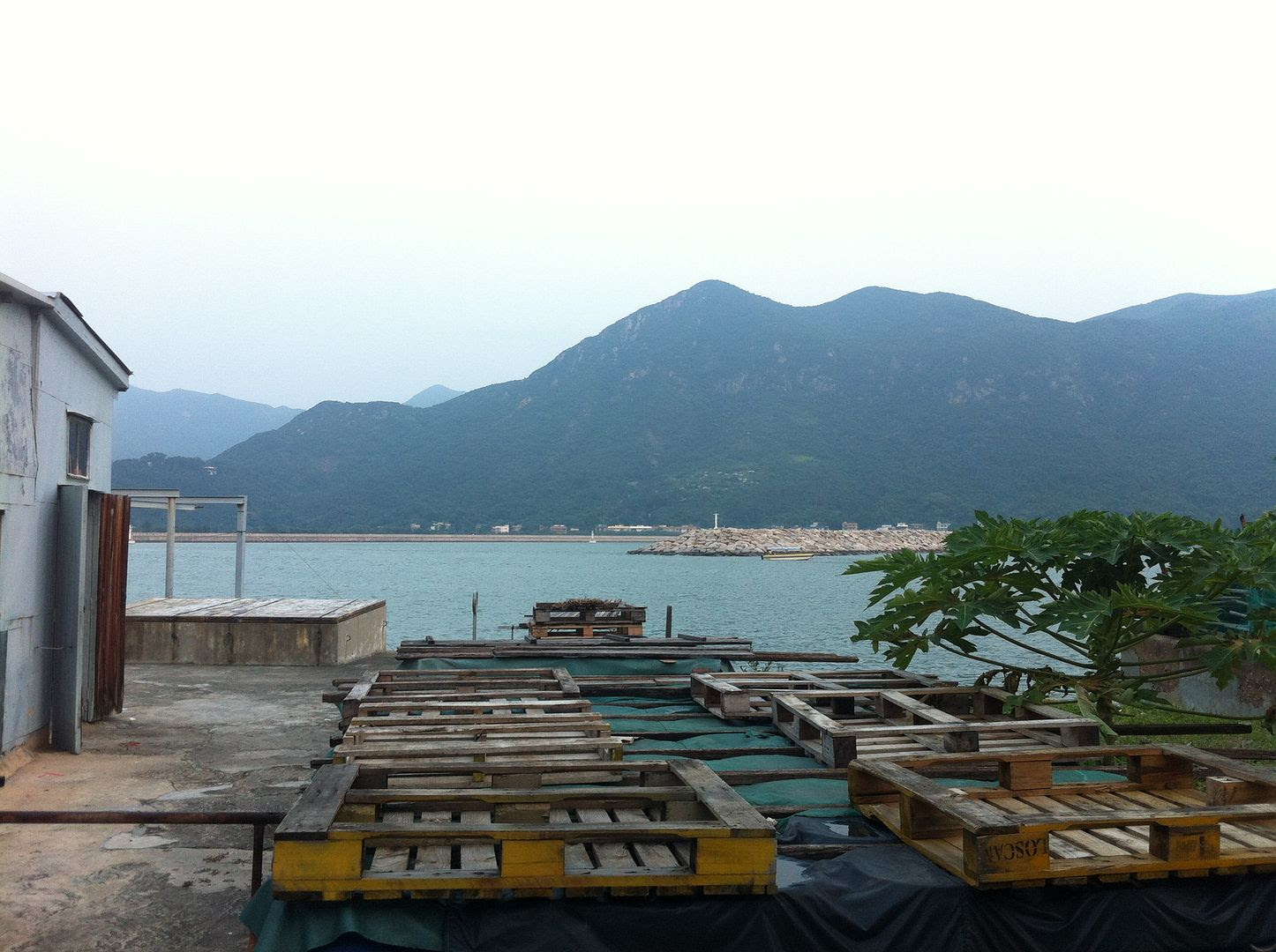 Tai O Fishing Village Near Hong Kong photo 2013-10-011740_zps99cbb764.jpg