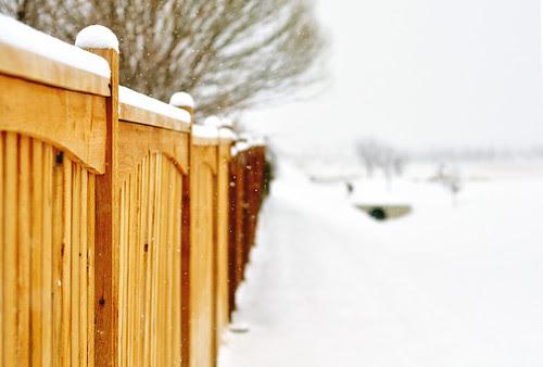 fence + snow haze