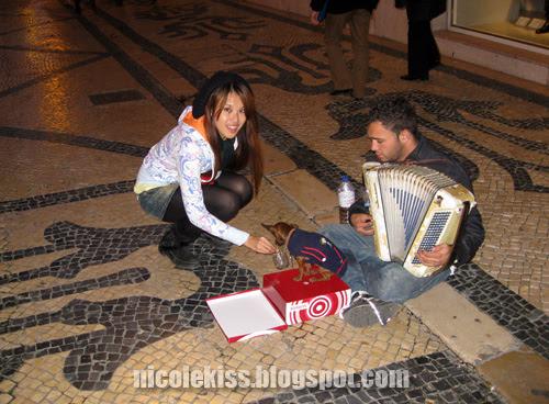 lisbon begging chihuahua