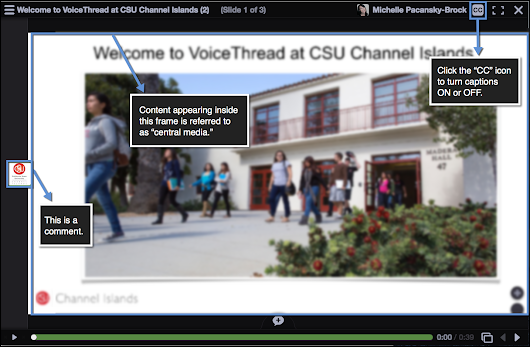 VoiceThread Accommodations for Students with Disabilities
