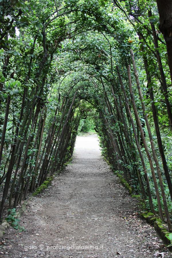 Tunnel verde