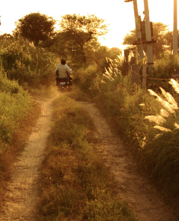Two men ride a bike at breakneck speed through the farms in Rajasthan
