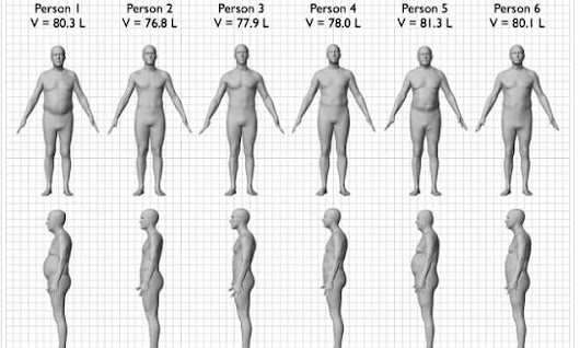 The graphic that reveals why BMI is useless